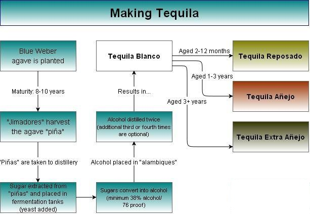 Making Tequila - A Simple Chart & Explanation